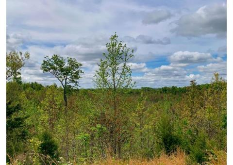 20 Acres in Clifton with amazing wooded views.